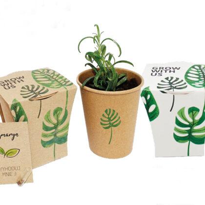 Auginimo rinkiniai